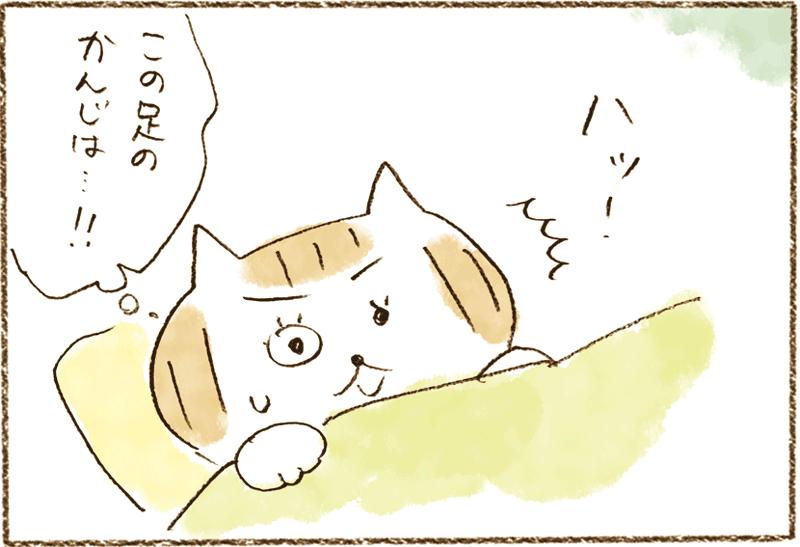 neko07_043[1]