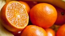fruit_mikan1[1]