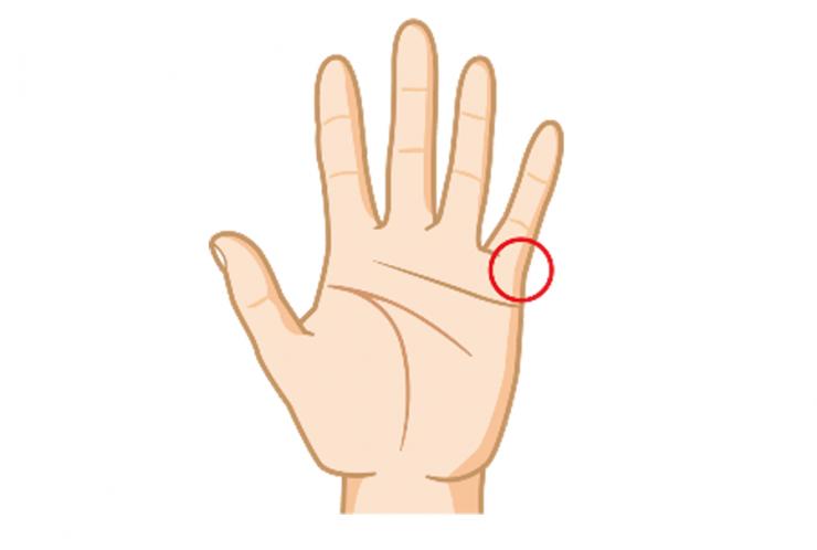hands_01[1]