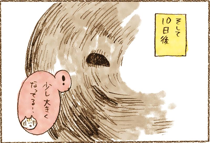 neko2-15[1]
