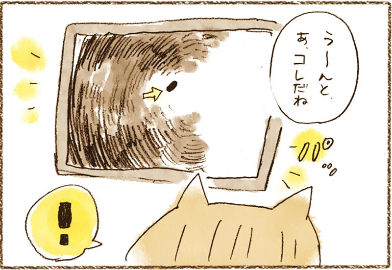 neko2-8[1]