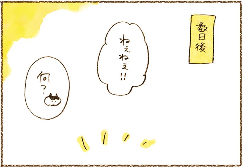 neko4_33[1]