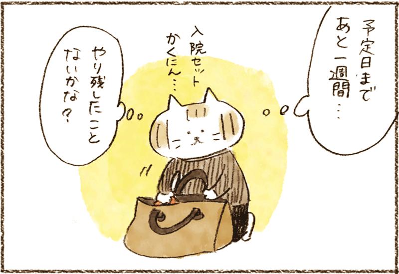 neko01