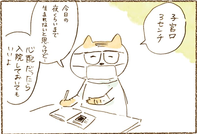 neko11-02