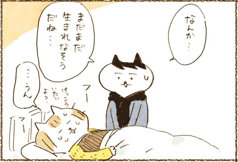 neko11-09