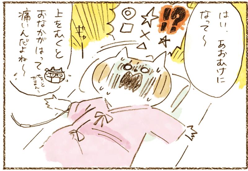 neko11-24