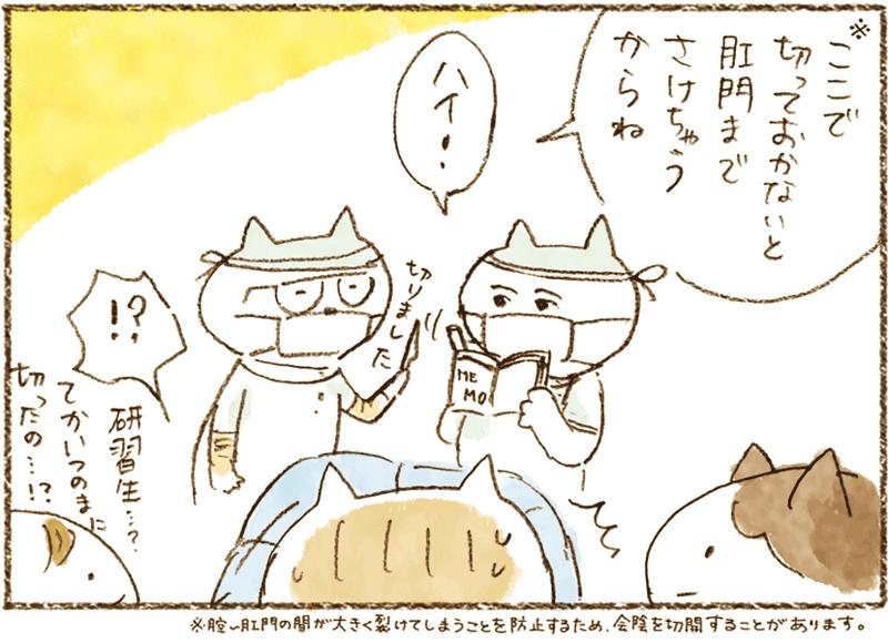 neko11-37