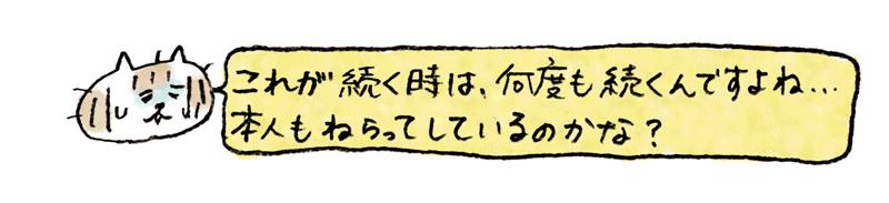 and_neko_01_05