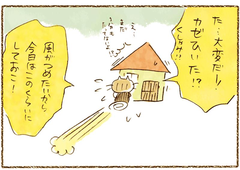 andneko4-4