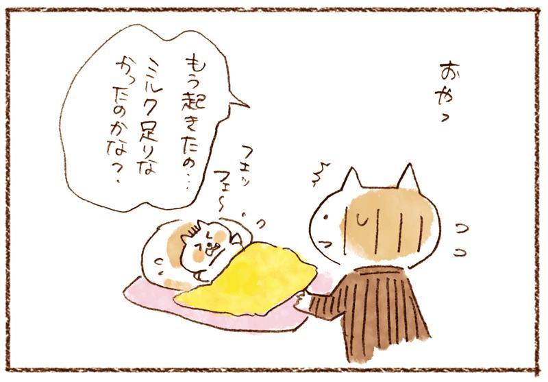 andneko05_02