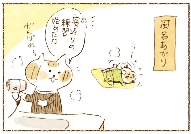 andneko07_02_01_01