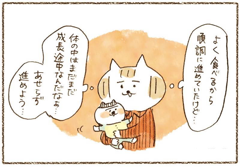 andneko09_04_02_04
