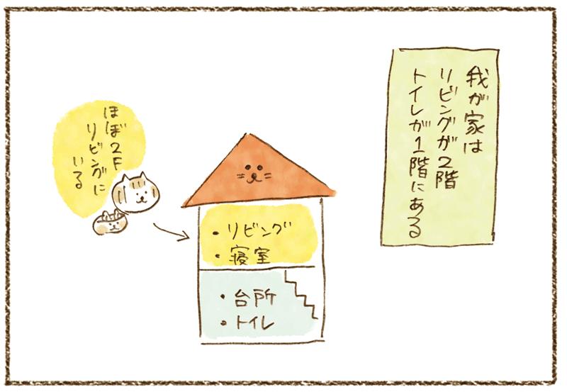 andneko1104_01