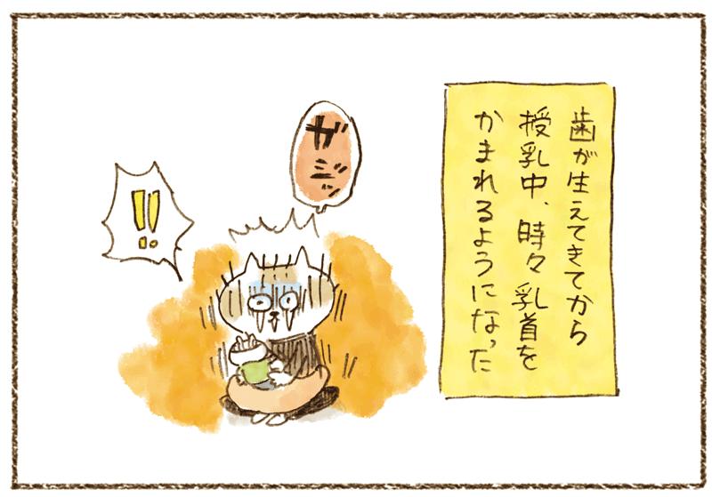 andneko1104_02