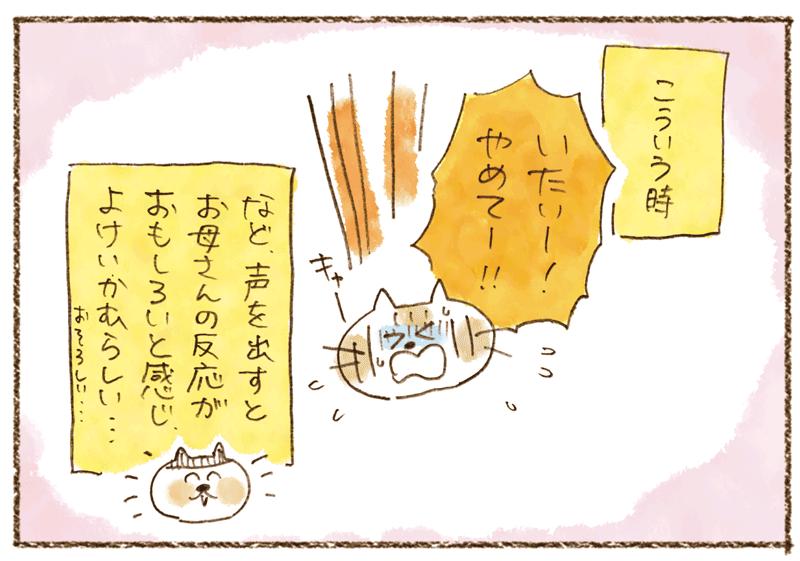 andneko1104_03