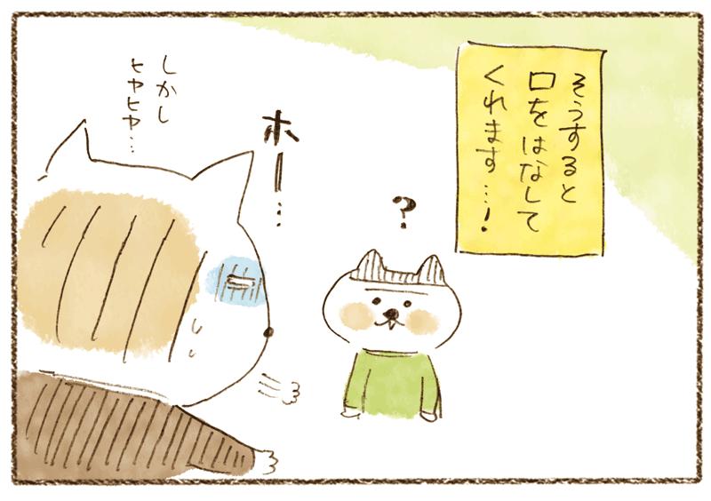 andneko1104_05