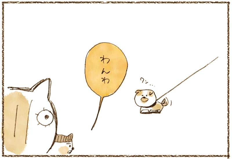 andneko11_02