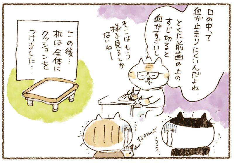 andneko11_02_04
