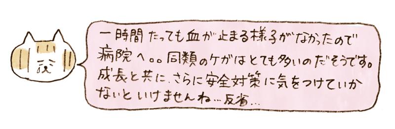 andneko11_02_05