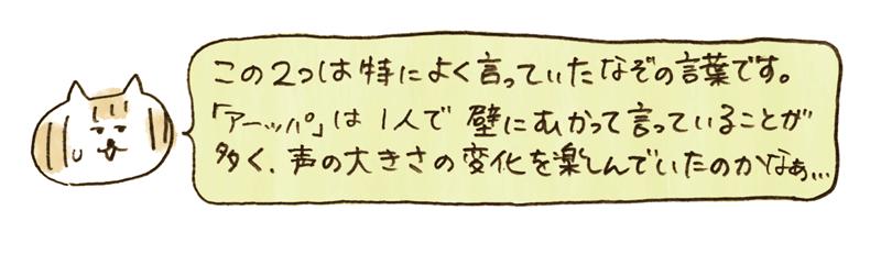 andneko12_02_05