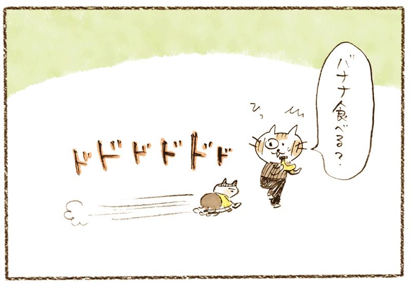 andneko12_03_03