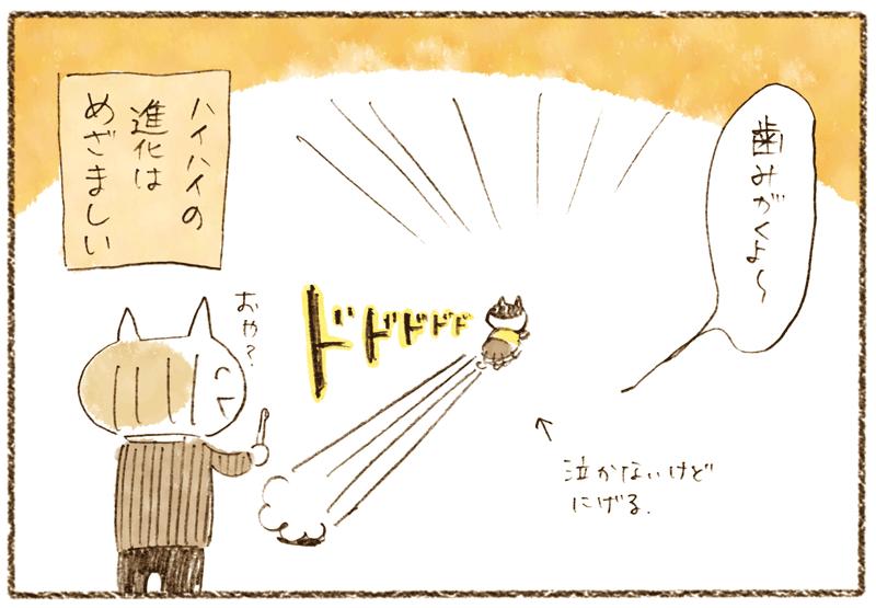andneko12_03_04