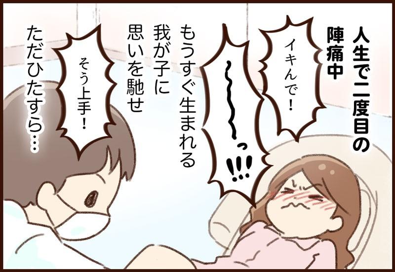 yumui-ln01-4