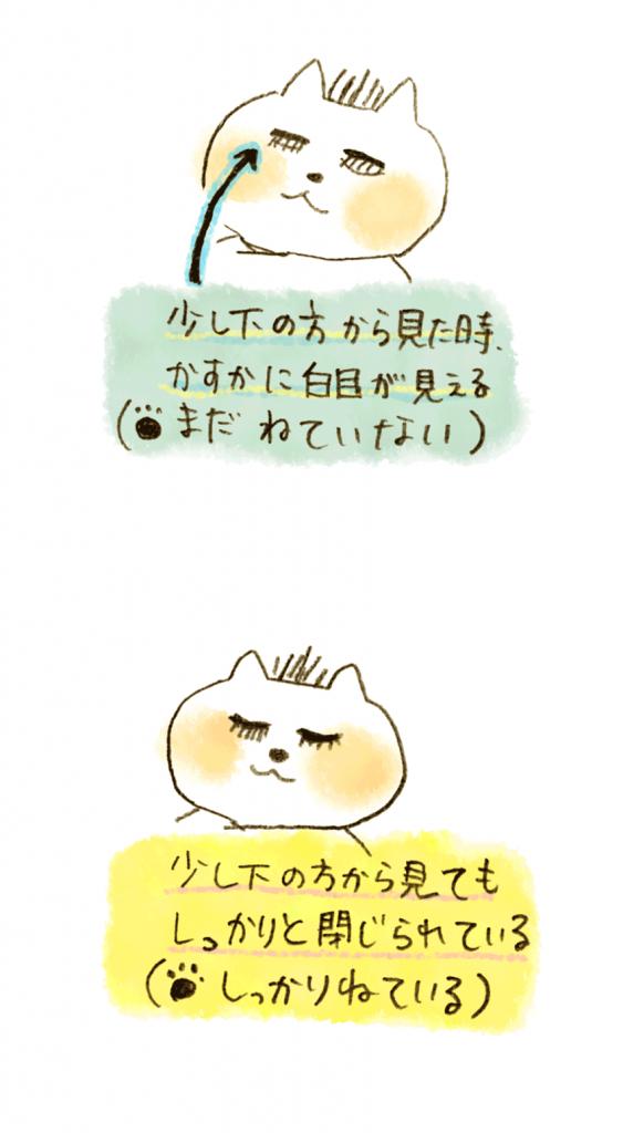 1001_02mewotojiru